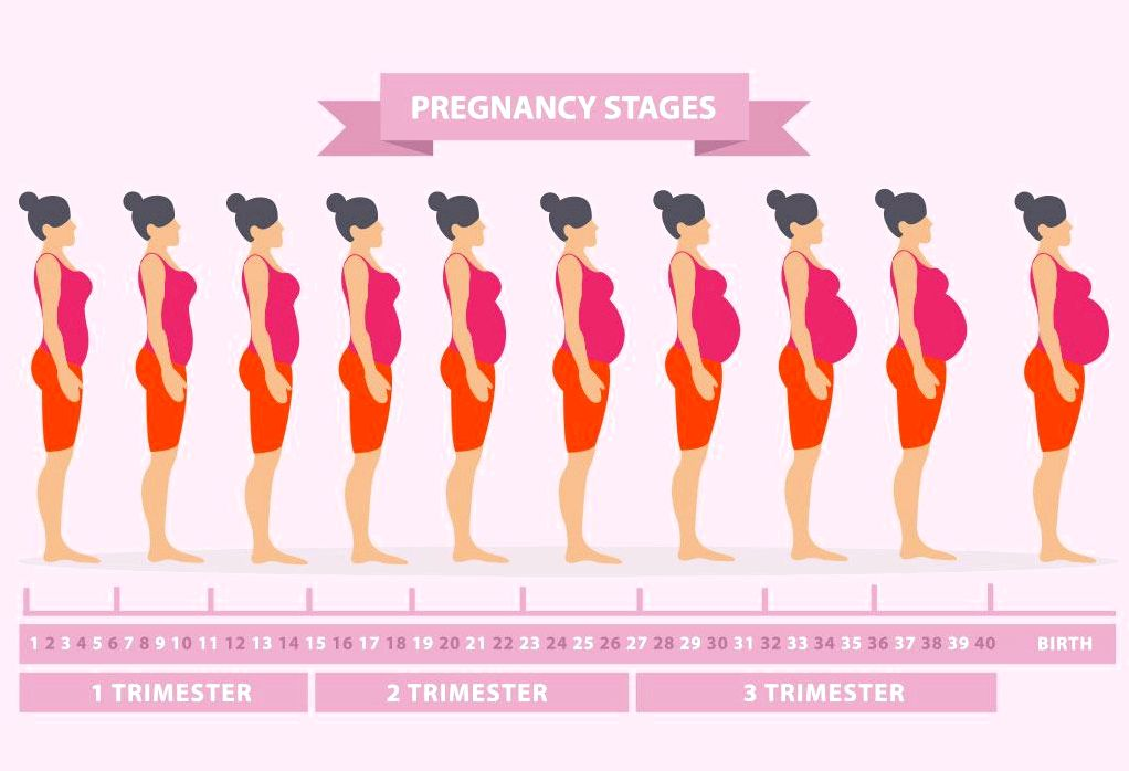 21 Early and then pregnancy signs and symptoms & stages week by week Tastebuds form in your baby