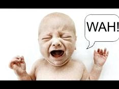 Departing baby to weep could damage brain development, parenting guru claims arrive at the cot for